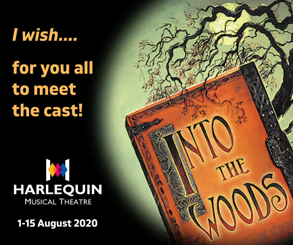 Into the Woods Cast Announcement